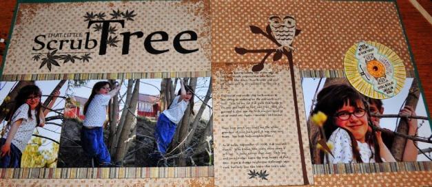 Scrub Tree